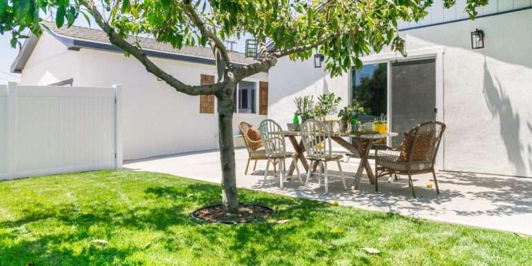Backyard DSC08359
